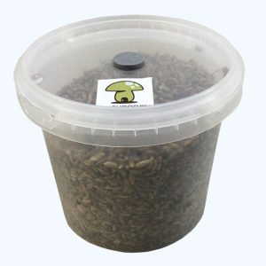 Grain Spawn Kit